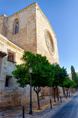 Rose window and tower of Tarragona Cathedral in sun light, Spain