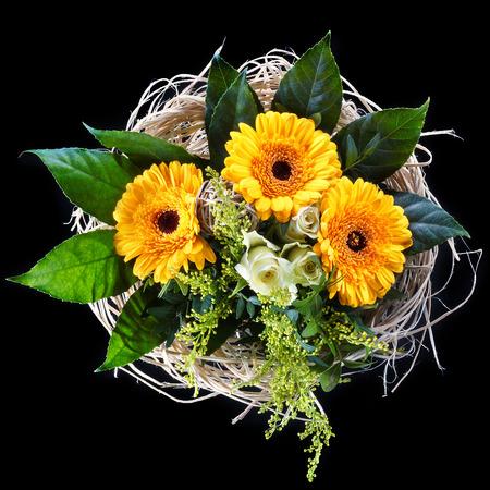 margarite: Flowers on black Stock Photo