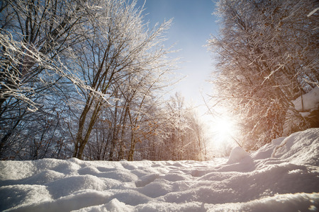 Snow-covered road in the Carpathian mountains in the forest, in front of the bright sun. 写真素材