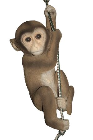 noise isolation: Sculpture toy monkey dangling on a rope. On a white background.
