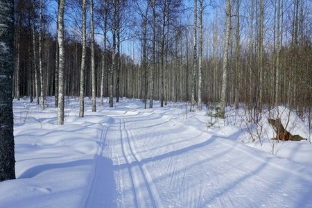 View of the sunny and frosty day in winter forest, wide road with ski track, Finland