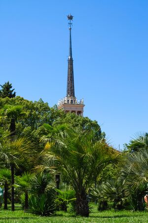 Sochi, Russia - July 20, 2019: The spire of the marine station surrounded by greenery. Vertical frame, left view.