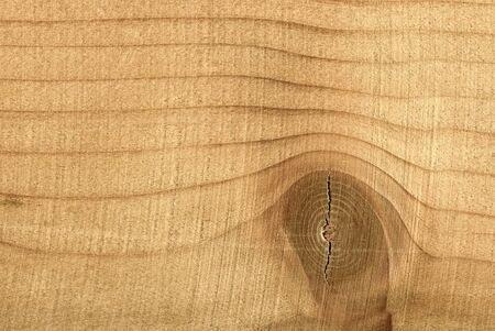 Wood surface. Smooth wood structure. Texture swirl close up