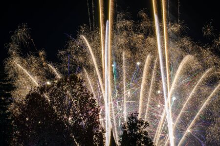 White firework flying upside down behind tree silhouettes against a night sky