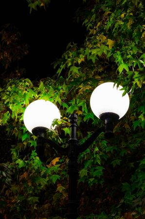 Street lamp on a background of green foliage in the park. Two brightly shining round shades, close-up. City improvement. Vertical frame