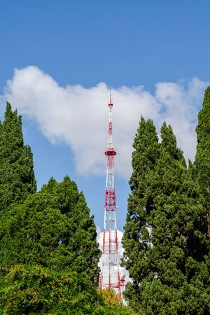 TV tower. Repeater. Green cypress. Blue sky with white cloud. Industrial facilities in the city. Vertical frame