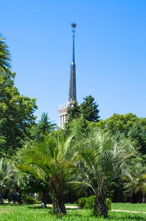 The spire of the Sochi sea terminal surrounded by palm trees Фото со стока