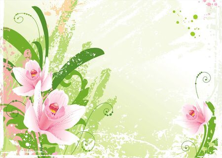 pink orchid: Grunge floral background with orchids