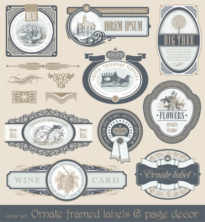framed: Vector set of vintage framed labels & page decor Illustration