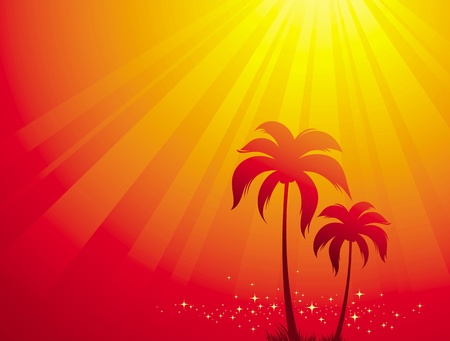 tropical sunset: Vector illustration with palm trees & sunlight