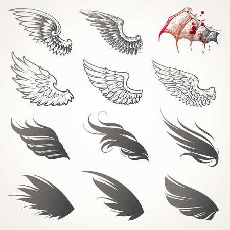 hand drawn wings: Insieme vettoriale di Ali