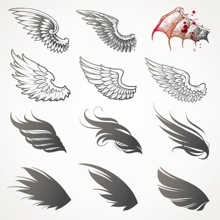 plume: Vector set d'ailes