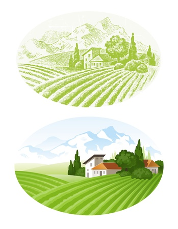 Hand drawn vector landscape with agrarian fields, village and mounains