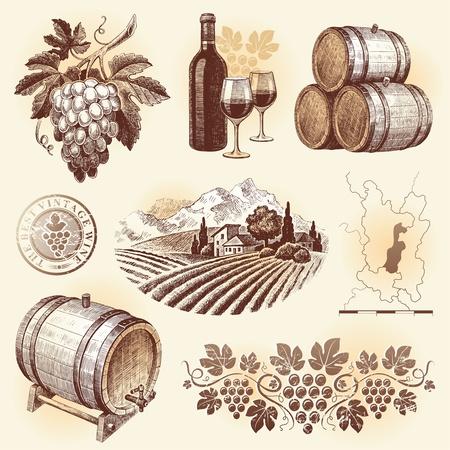 uvas: Conjunto de vector dibujado a mano - Vi�a y el vino