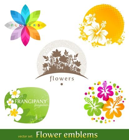 plante tropicale: Vector set - fleur embl�mes et �tiquettes