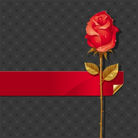 Vector Valentines illustration with Red rose and ribbon Stock Vector - 9953419