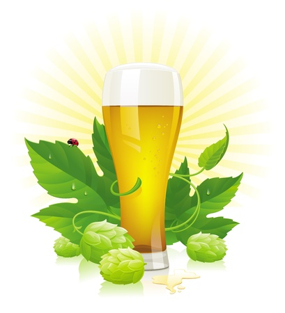 on tap: Vector glass of beer, hop  and leaves