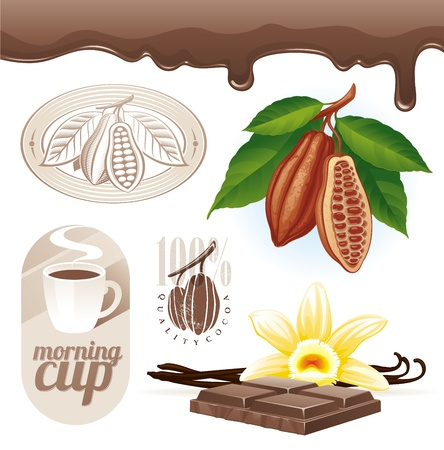 cocoa fruit: Vector set - Cocoa beans and chocolate