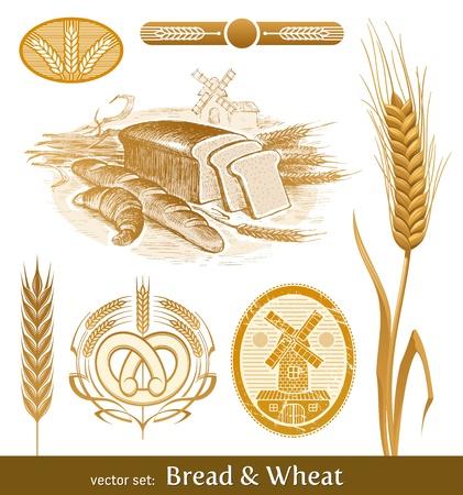 Vector set - brood en tarwe