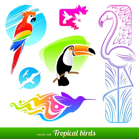 pink flamingo: Vector set of stylized decorative tropical birds