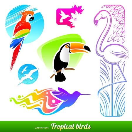 beaks: Vettore di set stilizzati uccelli tropicali decorativi