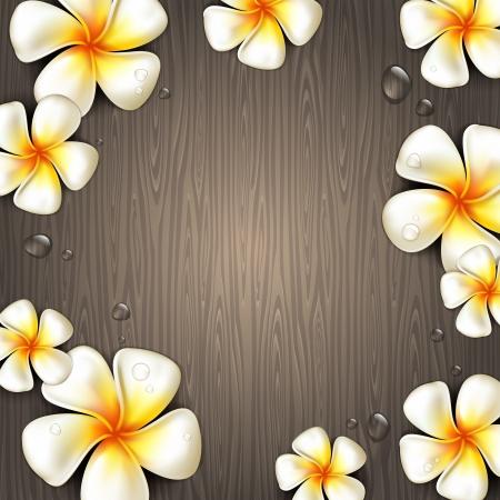 식물상: 벡터 일러스트 레이 션 - 나무 배경에 frangipani 열 대 꽃과 물 상품 일러스트