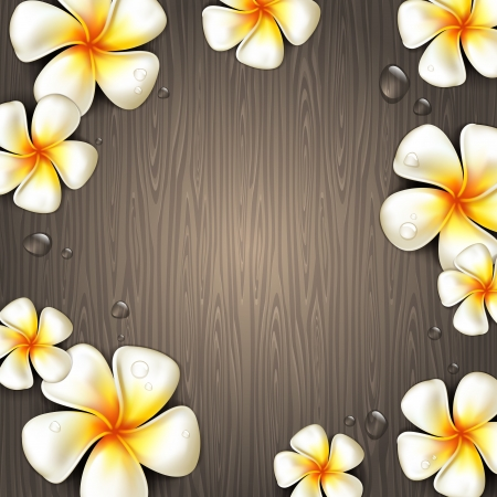 frangipani: Frangipani tropical flowers and water drops on a wooden background - vector illustration
