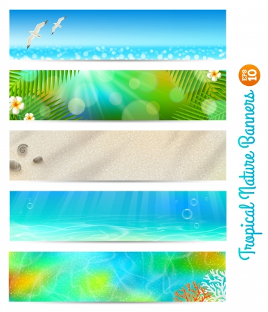 natures: Travel and vacation banners with tropical natures