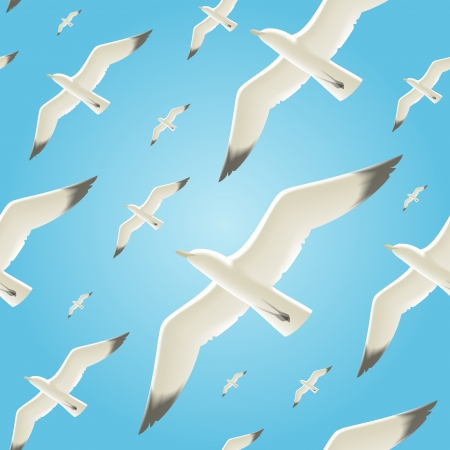 gull: Vector seamless background with seagulls