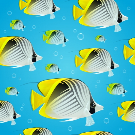 butterflyfish: Vector seamless background - tropical butterflyfish Illustration
