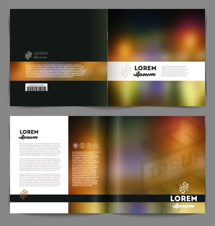 booklet design: Vector template booklet abstract design - cover and inside pages
