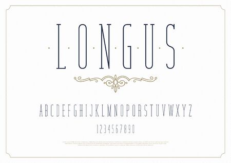 Elegant stylish font. Modern condensed serif typeface. English alphabet. Set of letters - uppercase and numbers.