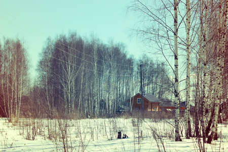 rickety: Outskirts of the Russian countryside against the backdrop of birches. Spring, sunny landscape. Retro style.