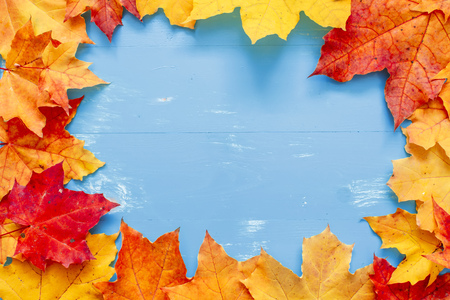 Autumn Thanksgiving Background. Place for text.