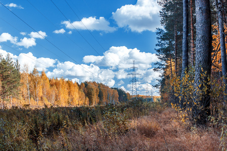 Electrical tower in autumn landscape Stockfoto - 103986852