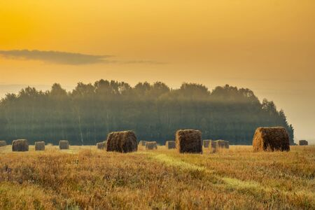 Golden sunset over farm field with hay bales. Autumn landscape. Stock Photo