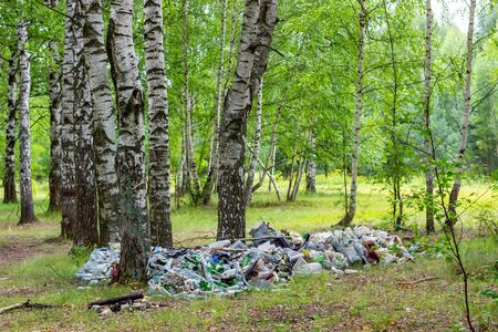Garbage dump in the forest. Environmental pollution. People illegally throw garbage in the forest. Concept: about man and nature