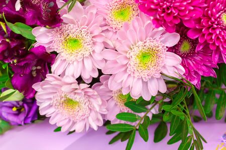 Beautiful bunch of flowers. Summer background. Stock Photo