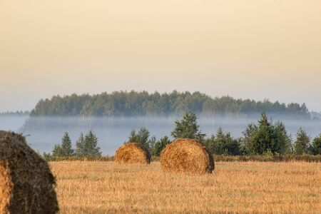 Straw bales on farmland on autumn sunrise Banque d'images