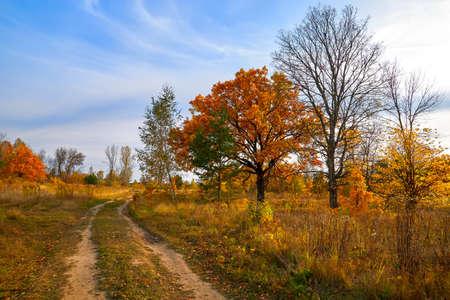 Autumn landscape. Beautiful sunny autumn day