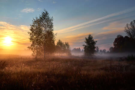 Autumn golden sunrise. Autumn in Russia. Sunny day.
