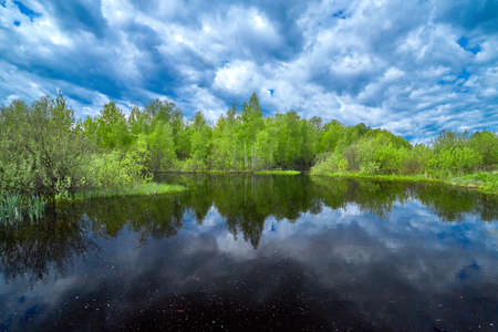 Summer landscape with lake, green birch and clouds