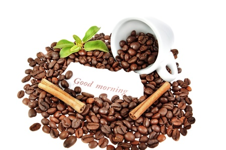 composition of a cup of coffee, cinnamon, and plants. photo