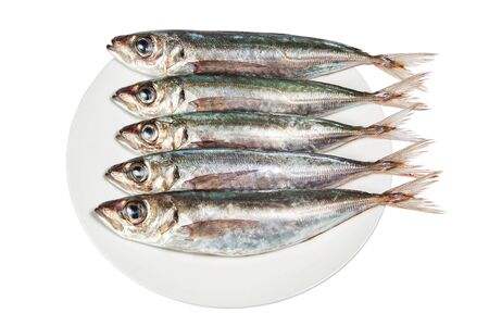 Raw mackerel on a plate. On a white background. Stock Photo - 13010210