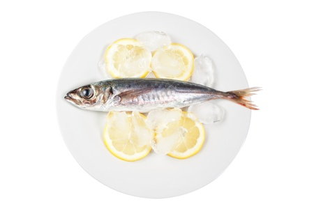 Mackerel in the bowl with the lemon. On a white background. Stock Photo - 13010190