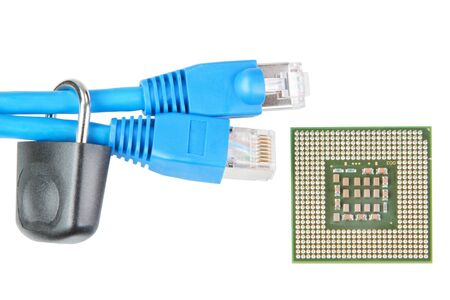 A pair of network cables to lock and the microprocessor  Stock Photo - 14328317