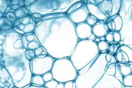 Blue oil bubbles in water close up. Standard-Bild