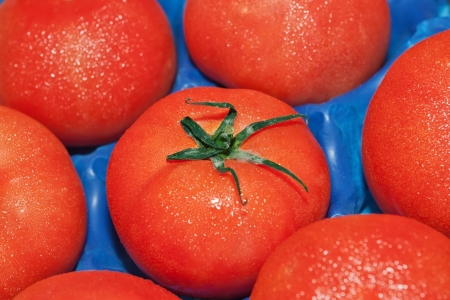 Tomatoes in a box close up. photo