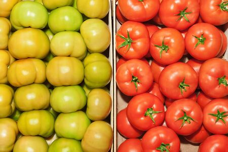 The contrast of red and green tomatoes close up. photo