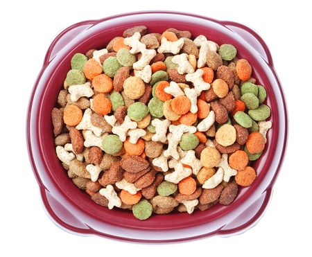 Plate of food for dogs and cats from above  On a white background Stock Photo - 16456491